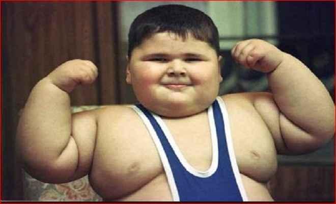 बच्चों सहित 30 फीसदी लोग मोटापे का शिकार