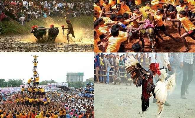 संस्कृति, कानून और प्रदर्शन... कब तक..?