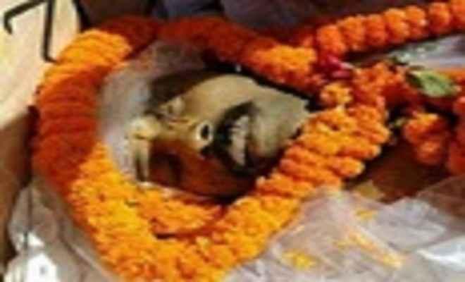 राजकीय सम्मान के साथ शहीद बृज किशोर का अंतिम संस्कार
