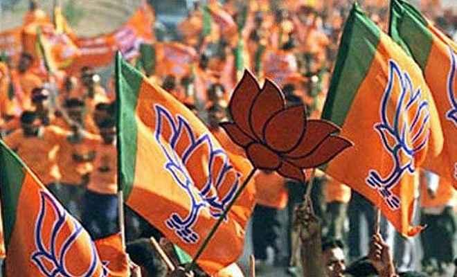 महाराष्ट्र ग्राम पंचाय़त चुनावों में मिली सफलता से भाजपा उत्साहित