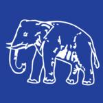 निकाय चुनाव में 22 वार्डो में बसपा के परम्परागत वोटों पर घमासान, भाजपा सपा को फायदा