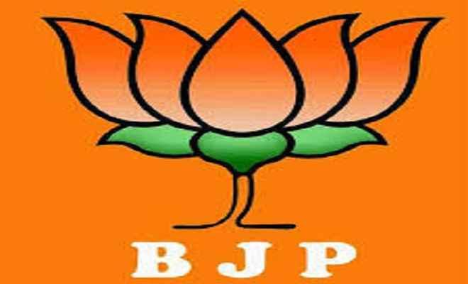 मुख्यमंत्री किसान एवं सर्वहित बीमा योजना से लाखों किसान होंगे लाभान्वित: भाजपा