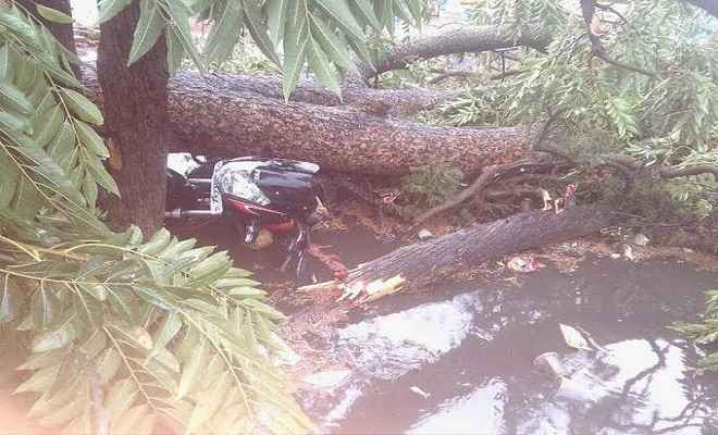 लोहरदगा में आंधी-तूफान से तबाही, वज्रपात से एक की मौत