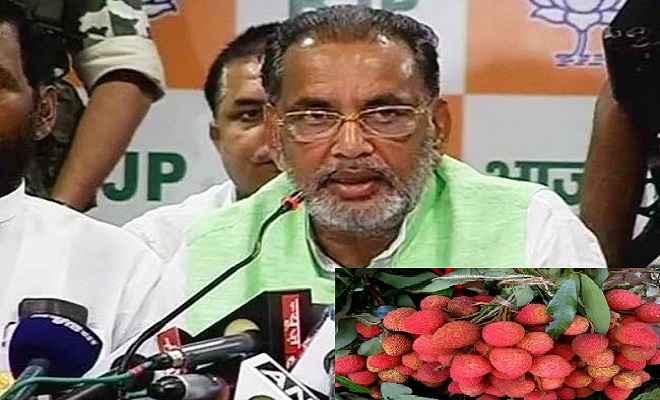 लीची उत्पादकता बढ़ाने की जरूरत : कृषि मंत्री
