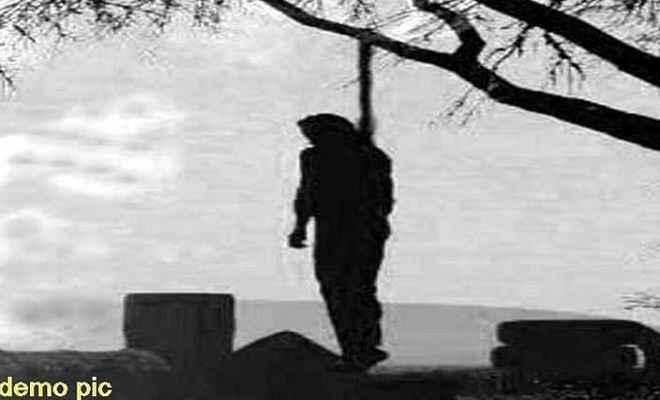 पेड़ से लटका शव बरामद