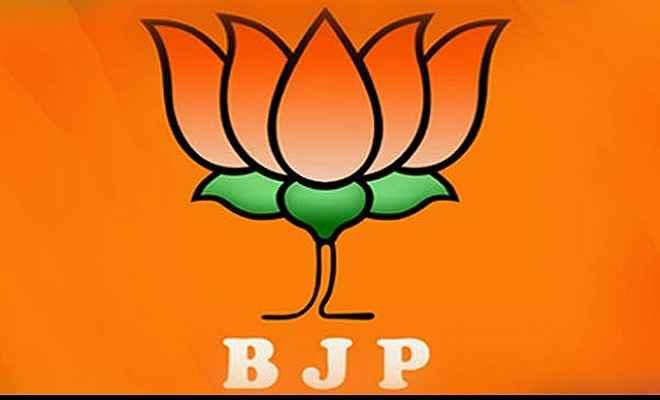 नीतीश सरकार विकास और अपराध नियंत्रण में विफल : भाजपा