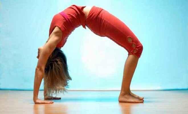 योग हड्डियों-मांसपेशियों की समस्याओं की रोकथाम में कारगर : विशेषज्ञ