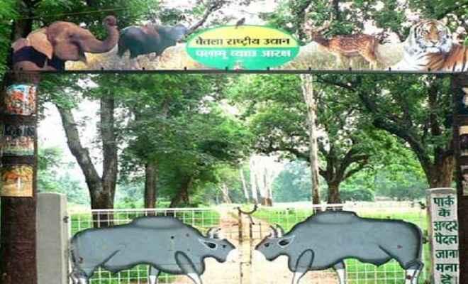 बेतला नेशनल पार्क तीन माह के लिए बंद