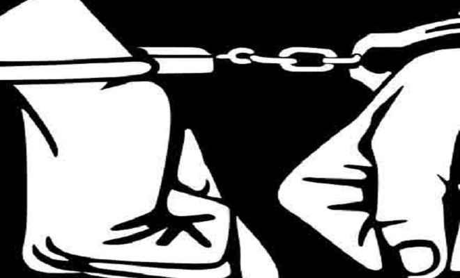 झपटामार गिरोह के दो सदस्य गिरफ्तार