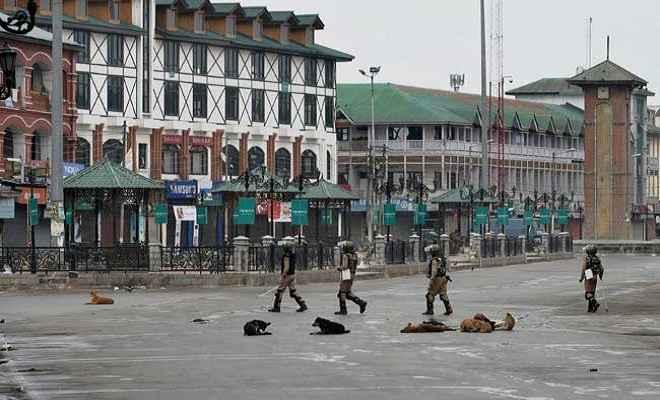 क्या है 'कश्मीर समस्या' का समाधान?: कृष्ण प्रभाकर