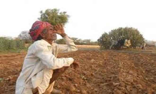 बारिश नहीं होने से किसान चिंतित