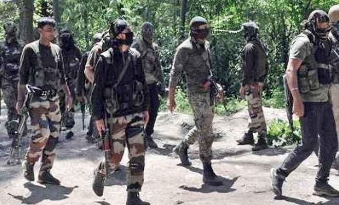 जम्मू/कश्मीर: पुलवामा एनकाउंटर में एक आतंकी ढेर, सेना का सर्च ऑप्रेशन जारी