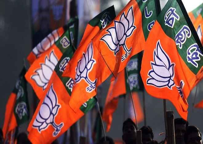 गुजरात निकाय चुनाव में बीजेपी को मिली जीत, कांग्रेस का भी शानदार प्रदर्शन