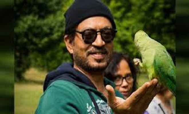 खुलासा: इरफान खान न्यूरो इनडोक्राइन ट्यूमर के हुए हैं शिकार
