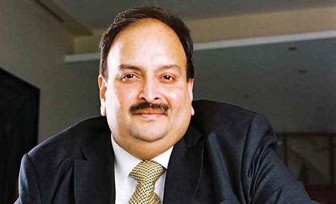 पीएनबी घोटाला : मेहुल चोकसी का सीबीआई को लेटर, कहा- 'मैं बहाना नहीं बना रहा हूं'
