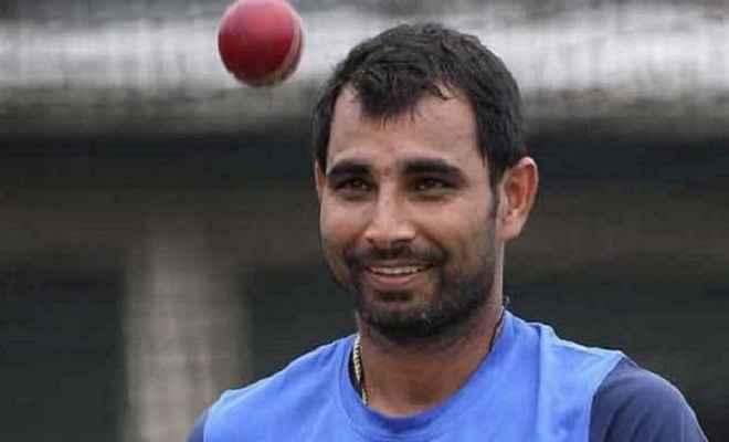अब आईपीएल में खेलेगा शमी : बीसीसीआई