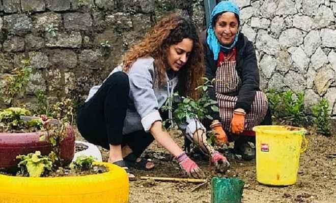 कंगना रनौट अपने 31वें जन्मदिन पर लगाए 31 पौधे, परिवार संग कुछ यूं बिताएंगी वक्त