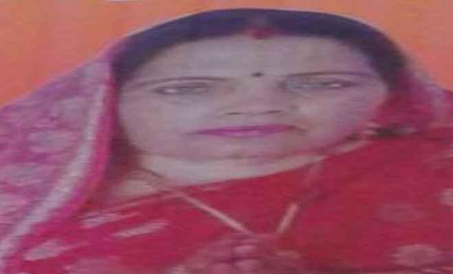 मुखिया-मीना देवी ने पर्यटक स्थल घोषित करने को मुख्यमंत्री को मांग पत्र सौंपा