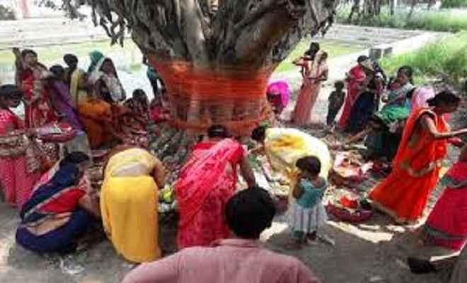 वट सावित्री व्रत आज, शादीशुदा महिलाएं अखंड सौभाग्य के लिए करें वटवृक्ष का पूजा