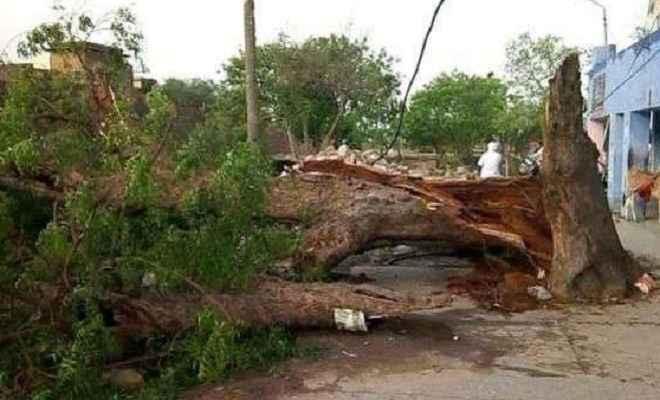 आंधी-बारिश ने ली पांच लोगों की जान, बिजली व्यवस्था चरमराई