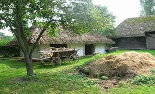गोसांग गांव में ग्राम विकास समिति का गठन हुआ सम्पन्न
