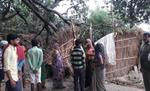 आंधी-तूफान का कहर, झोपड़ी पर गिरा आम का पेड़, 50 वर्षीय महिला की मौत