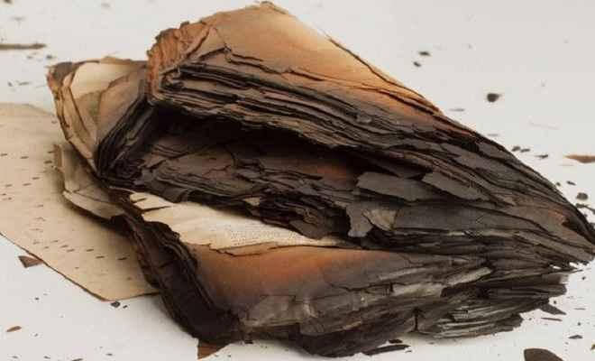 भागलपुर में शरारती तत्वों ने न्यायिक अधिकारियों के चैंबर को बनाया निशाना, रिकॉर्ड जलाया