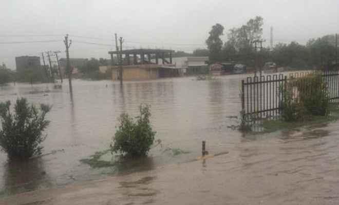 मध्यप्रदेश: नदी-नाले उफान पर, फिर भी जान जोखिम में डालकर पुल पार कर रहे लोग