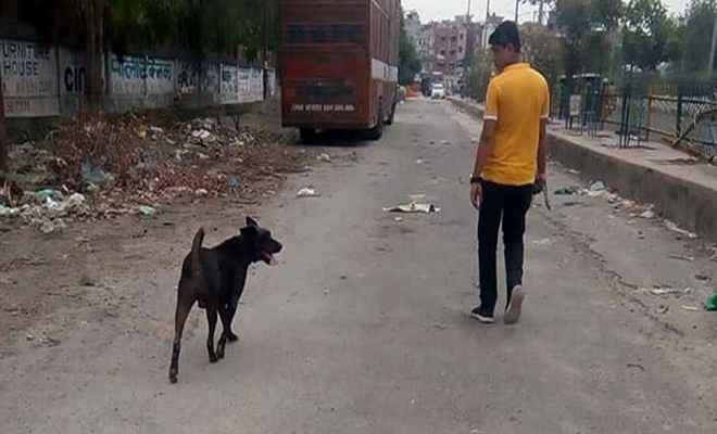 बुराड़ी कांड के 22 दिन बाद परिवार के पालतू कुत्ते जैकी की भी हुई मौत