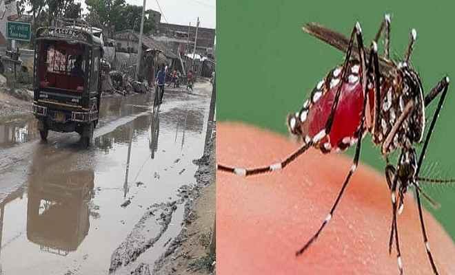 बारिश के बाद अब बिहार में डेंगू ने पसारे अपने पैर, 980 पहुंची मरीजों की संख्या