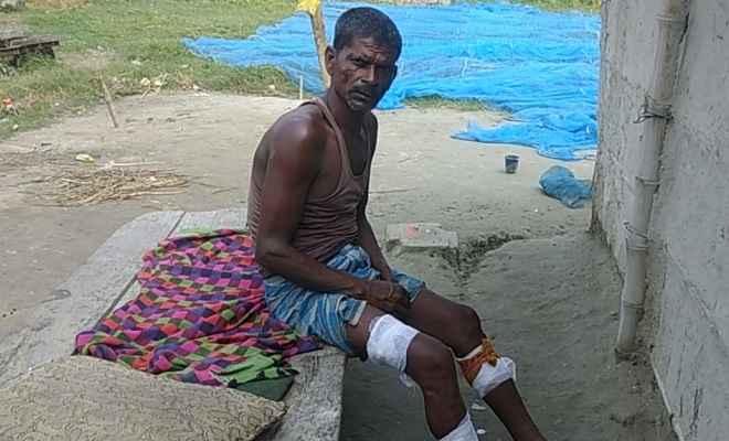 मछली पकड़ने गये मछुआरे को मगरमच्छ ने किया बुरी तरह घायल, इलाके में दशहत का माहौल