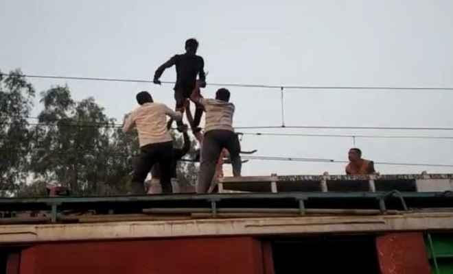 मध्य प्रदेश: रेलवे की 25000 केवीए लाइन पर चढ़ा विक्षिप्त युवक, सुरक्षित उतारा, घंटों ट्रैफिक हुआ बाधित