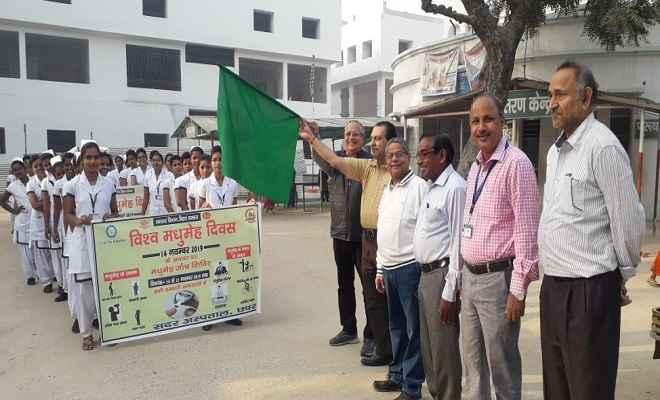 विश्व मधुमेह दिवस पर सभी सरकारी अस्पतालों लगा जांच शिविर, स्वास्थ्यकर्मियों ने निकाली जागरूकता रैली