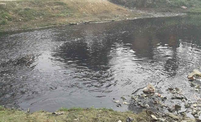 सरिसवा नदी बचाओ आंदलन को धारदार बनाने को बनी विशेष योजना