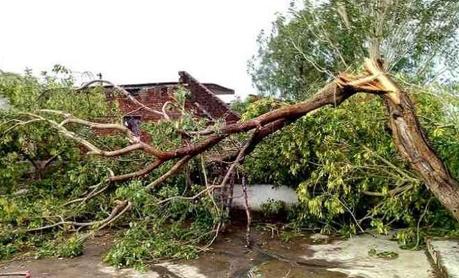 भयंकर आंधी-तूफान से अलग-अलग क्षेत्रों में तीन लोगों की मौत, छह से ज्यादा घायल