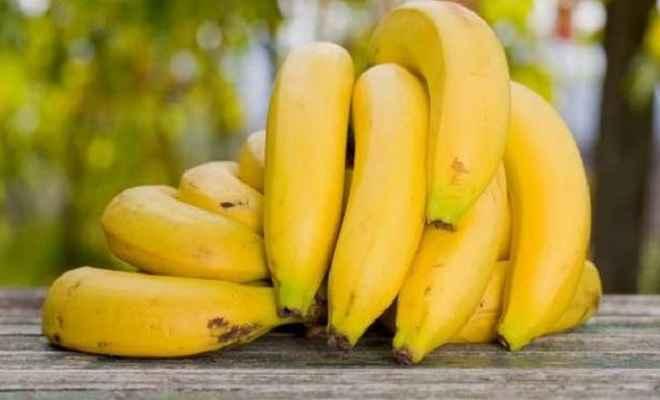 पौष्टिक और गुणकारी होता है केला, आप भी जानें इसके फायदे