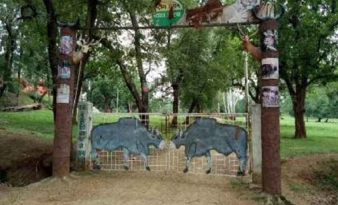 बेतला नेशनल पार्क पर्यटकों के लिए आज से बंद, अब एक अक्टूबर से खुलेगा