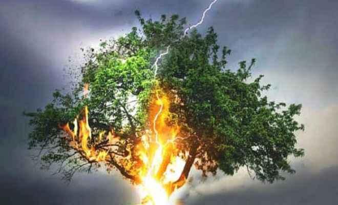 नवादा में बड़ा हादसा, आकाशीय बिजली के चपेट में आने से 9 बच्चों की मौत, कई जख्मी