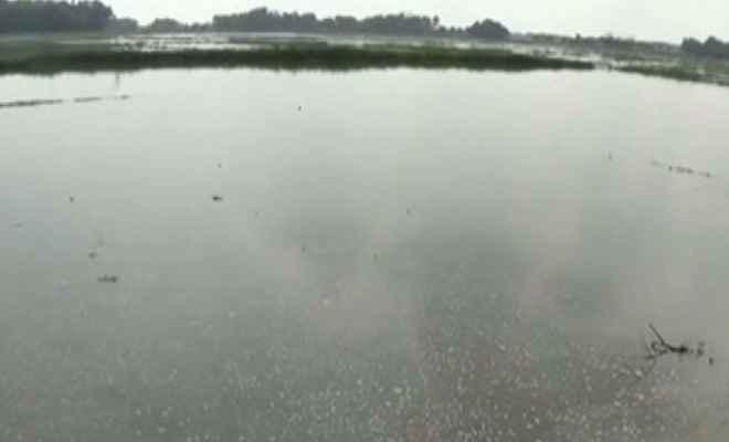 तालाब में डूबकर तीन नाबालिगों की मौत, परिवार में मचा कोहराम