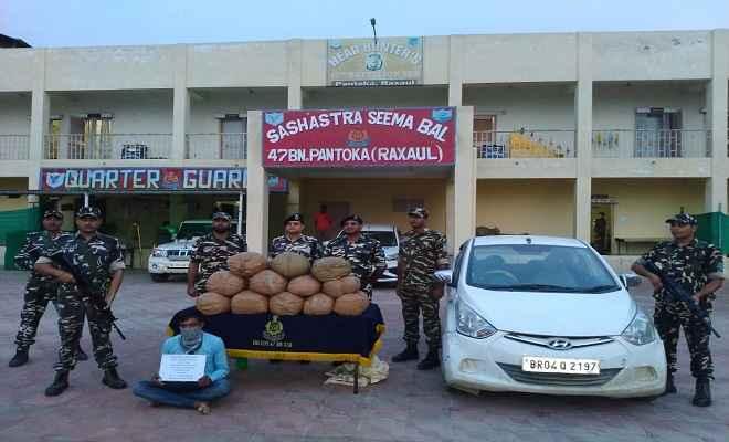 भारत नेपाल सीमा पर 62 किलो गांजा के साथ एक तस्कर गिरफ्तार