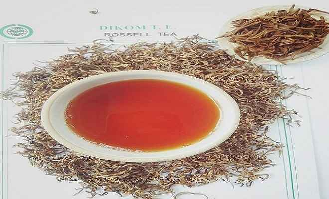 असम की गोल्डेन चाय 75 हजार प्रति किग्रा में बिकी, पिछले वर्ष से लगातार अंतरराष्ट्रीय बाजार में बना रही रिकॉर्ड