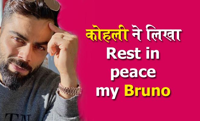 मशहूर क्रिकेटर विराट कोहली ने लिखा- रेस्ट इन पीस ब्रूनो तो लोग लेने लगे चटकारे