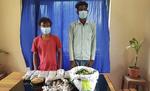 नेपाल के बीरगंज में रक्सौल के दो युवकों को गिरफ्तार, पुलिस ने कहा- दोनों के पास से भारी मात्रा में नशीली दवाइयां जब्त की गई
