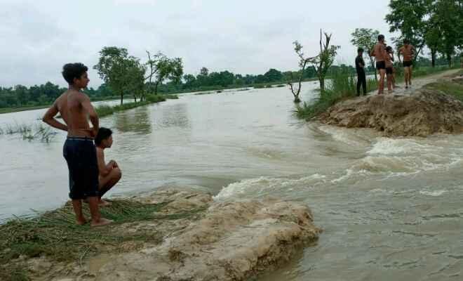 रामगढ़वा: खर कटवा व लक्ष्मीपुर के बीच मनरेगा से निर्मित बांध टूटा, सैकड़ो एकड़ में लगी धान की फसल नष्ट