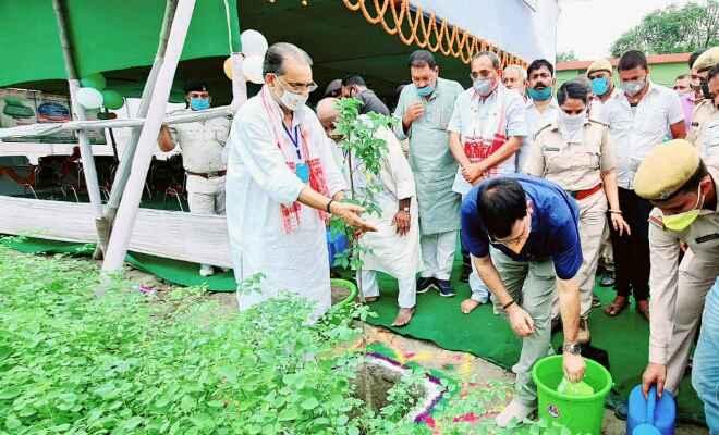 पूर्व केन्द्रीय मंत्री राधा मोहन सिंह ने पृथ्वी दिवस के अवसर पर बापू पौध शाला का उद्घाटन किया